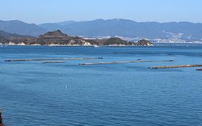 """能美島、""""清浄海域""""とは"""